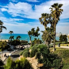 Tel Aviv si Haifagall-3