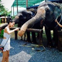 Thailanda dincolo de zambetgall-8