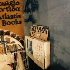 Santorini, dragoste la prima vederegall-15
