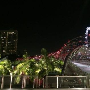 Singapore, orasul Leilorgall-7
